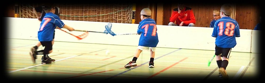 Working together as a floorball team