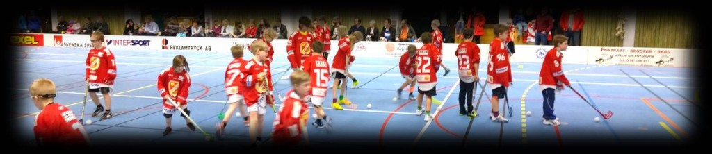 Hockey vs Floorball and team size